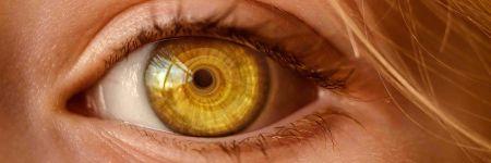 qu-est-ce-que-l-hypnose-ericksonienne